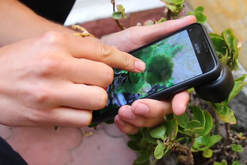 隨手以樹葉貼近鏡頭來鎖定對焦距離